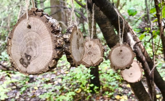 Rustic Wood Ornaments With Bark Intact