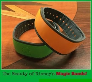 hurray for magic bands