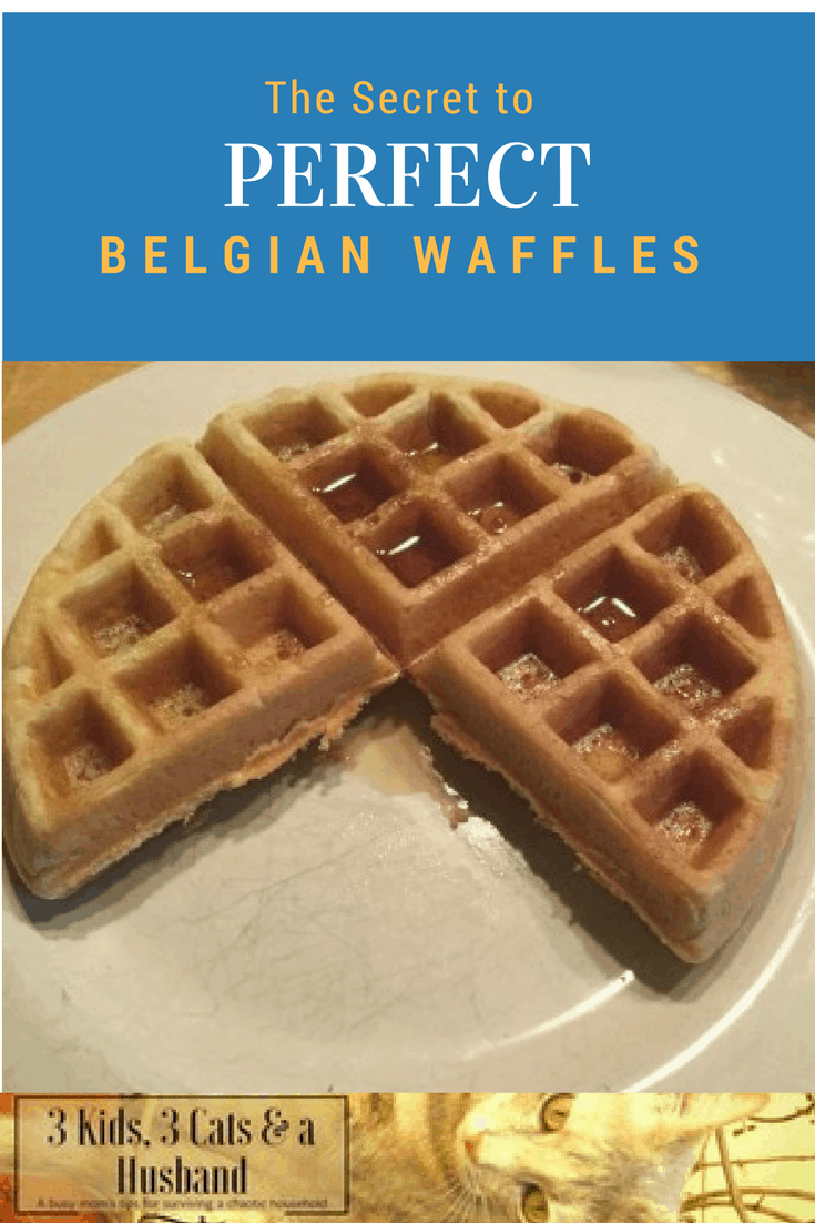 The Best Waffle Makers with Removable Plates (September 2019)