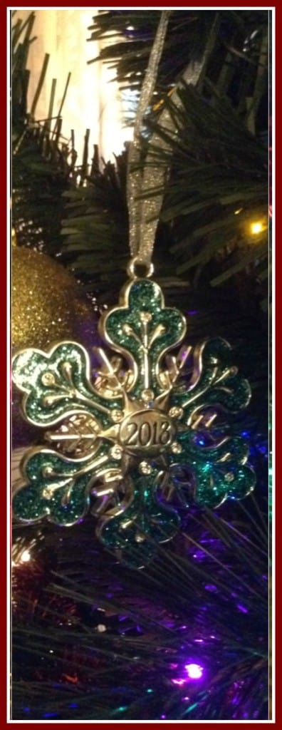 2013 Christmas Ornament