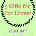 9 Gifts for Cat Lovers Under $10