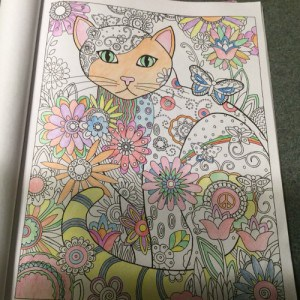 cat-lover-adult-coloring-book