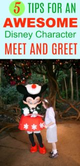 5 Tips for an Awesome Disney Character Meet and Greet