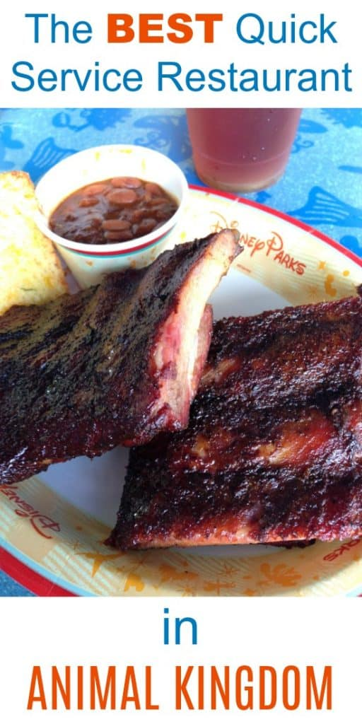 Why Flame Tree BBQ is the best quick service restaurant in Animal Kingdom