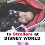 Complete Guide to Strollers at Disney World