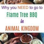 Why you need to go to Flame Tree BBQ in Animal Kingdom