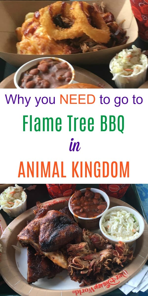 Review of Flame Tree BBQ at Animal Kingdom