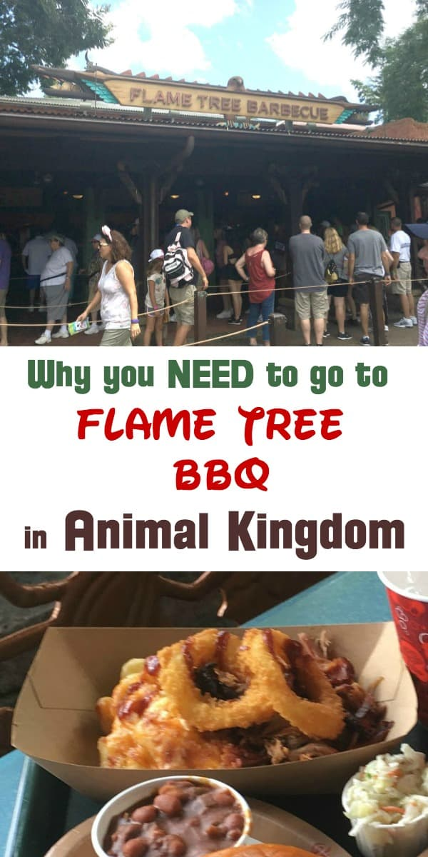 "Everything you wanted to know about the BEST restaurant in Animal Kingdom! Answers to questions like ""Does Flame Tree BBQ have outdoor seating?"" and ""What time does Flame Tree BBQ open?"" Also covers Flame BBQ snack credits and the Flame Tree BBQ allergy menu."