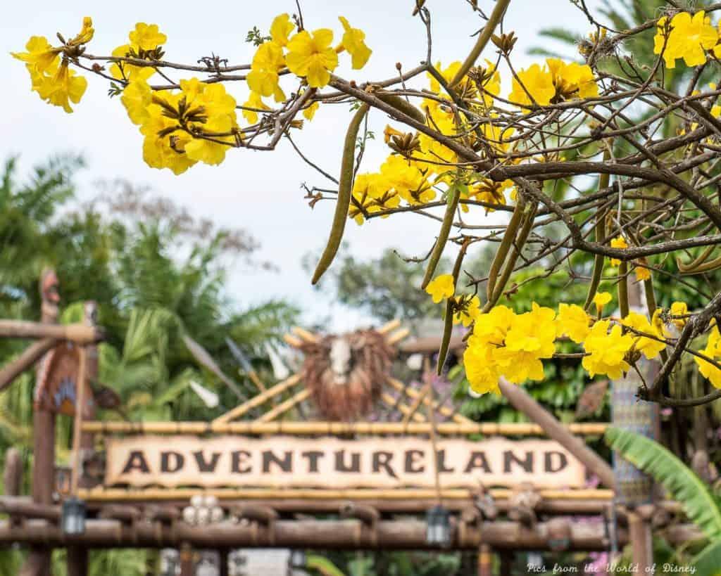 Adventureland in the Magic Kingdom at DIsney World
