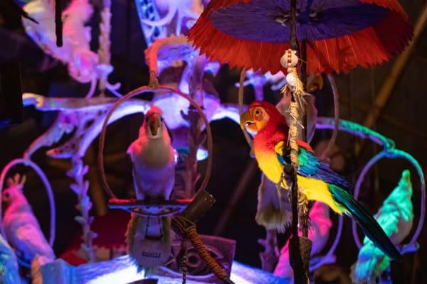 Tiki Room attraction at Magic Kingdom