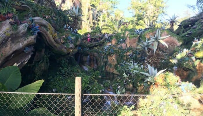 Avatar Flight of Passage: Wait Times, Motion SIckness, and Plus Size Guests