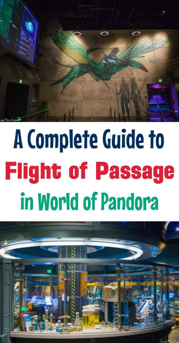 Avatar Flight of Passage Tips