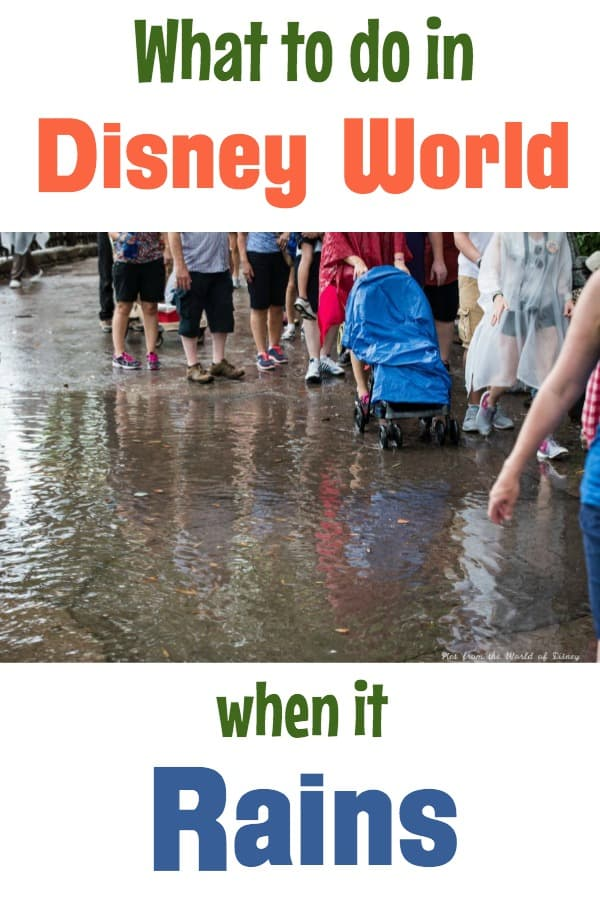 What to do in Disney World when it rains