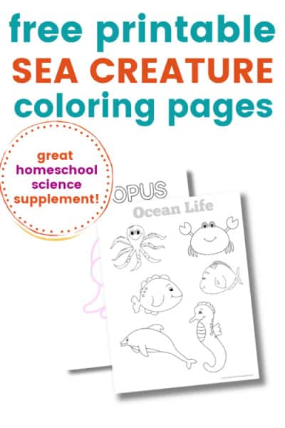 - Free Printable Ocean Life Coloring Pages (Fun Under The Sea!)