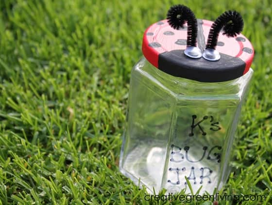 Homemade Ladybug Catcher from a Jar
