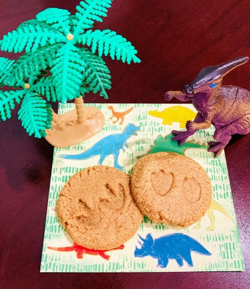 Finished dinosaur fossil cookie