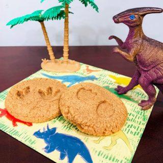 Dinosaur footprint fossil cookies
