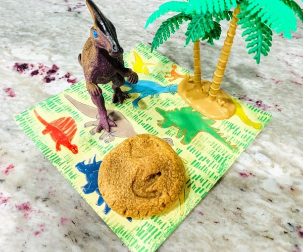 How to Make Dinosaur Footprint Fossil Cookies