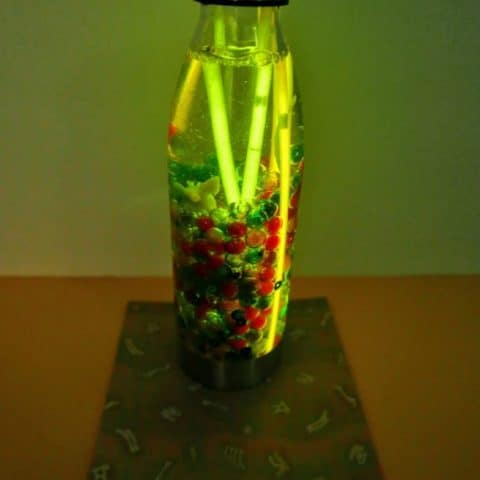 Glowing dinosaur sensory bottle