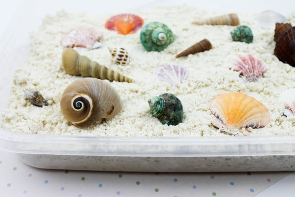DIY Seashell Moon Sand (an easy sensory activity)