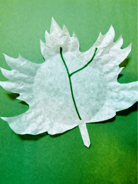 Maple leaf with green marker 2