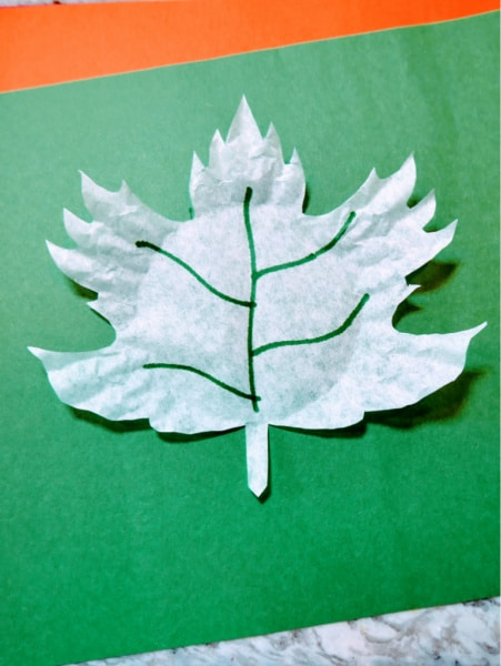 Maple leaf with green marker 6