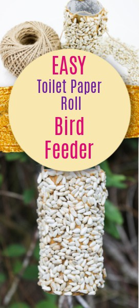 DIY bird feeder pin