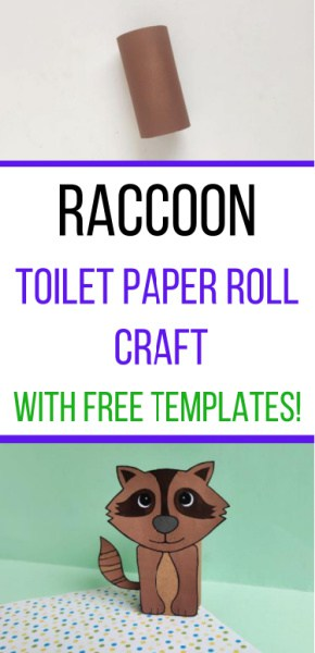 Raccoon toilet paper roll craft pin