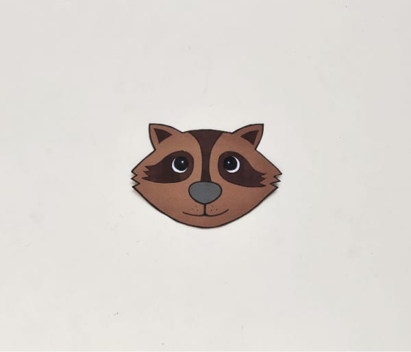 Step 6 raccoon toilet paper roll craft
