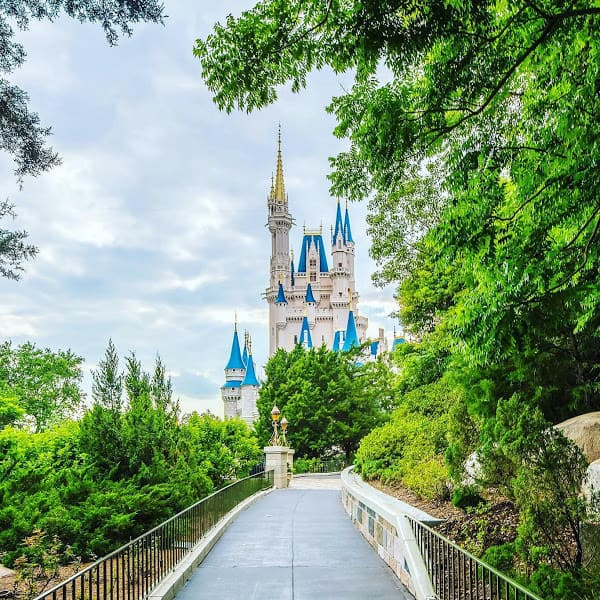 How to Prepare for Walking at Disney World