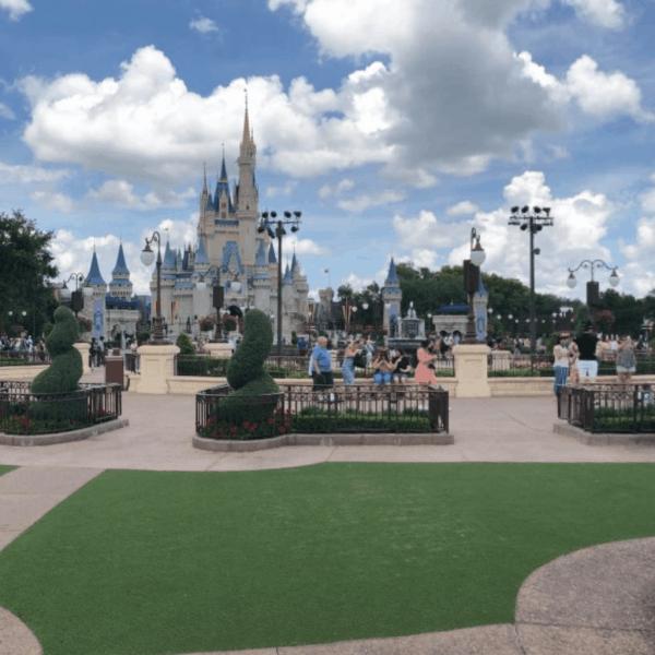 Hub grass at Disneys Magic Kingom