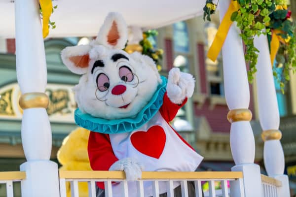 White rabbit character at Disney World